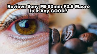 Review: Sony FE 50mm F2.8 Macr…