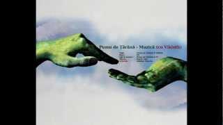 Pumn de Tarana - Muzica (cu ViKloth)