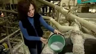 Производство бумаги из макулатуры