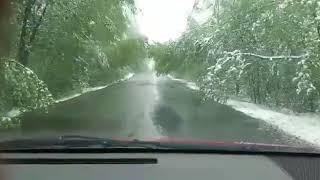 Неудивительно: в Хабаровском крае к концу мая выпал снег