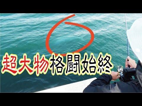 ごく普通の堤防で激動の超大物釣り【苦難格闘】