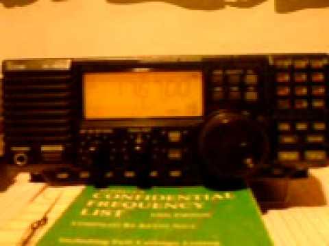 PALMA RADIO