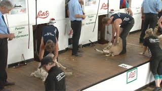 Pencampwriaeth Iau cyn derfynol 2| Junior Championship semi final 2