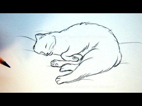 Katze zeichnen lernen – Tiere zeichnen und malen – schlafende Katze – DIY