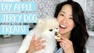 EASY Apple Jerky DIY dog treats  homemade dog treat recipe