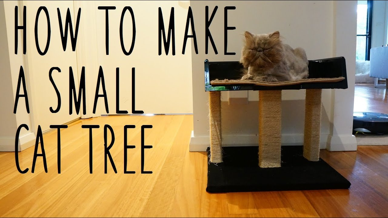 Diy small cat tree youtube - How to make a simple cat tree ...