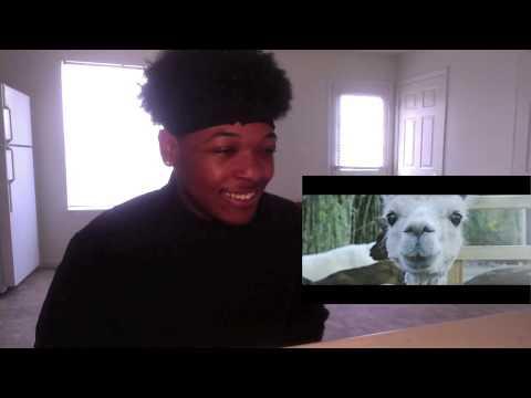ROD DA GOD FAIRYTALE OFFICAL MUSIC VIDEO REACTION