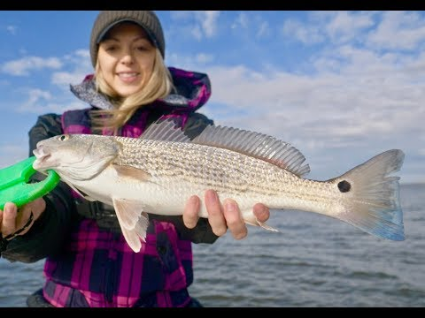 HOW To CATCH REDFISH (Red Drum) In The WINTER AND SPRING