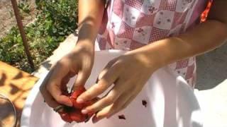 Bulgarian lutenitza how to make Lutenitza