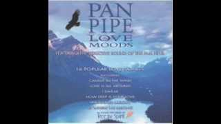 Unchained Melody panpipe instrumental.wmv