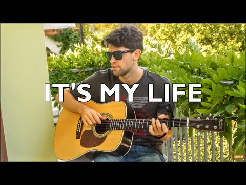 It's My Life - Bon Jovi (INSTRUMENTAL Fingerstyle guitar cover) [+ FREE TABs]