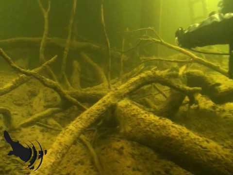 Lake St Clair: Dive 02