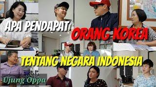 Apa Pendapat Orang Korea tentang Negara Indonesia [UJUNG OPPA]