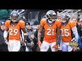 Denver Broncos Secondary No Fly Zone 2015 (Panda)