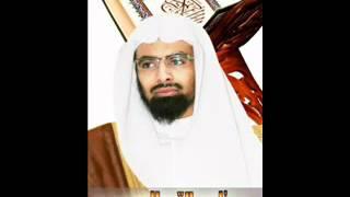 سورة البقره كامله بصوت ناصر القطامي