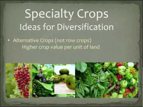 Farm Diversification - Ideas on Alternative Crops