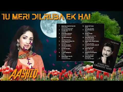 Jis Tarah Tu Meri Dilruba Ek Hai((AASHIQ))Kumar Sanu Rare Love Romantic Song