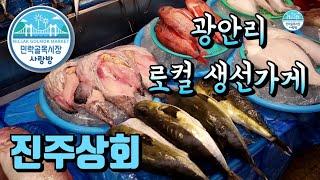 싱싱한 생선 조개 꽃게 장보기 [민락골목시장 진주상회]