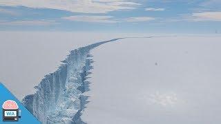 Dieses riesige Eisstück ist abgebrochen - darunter offenbart sich ein urzeitliches Ökosystem
