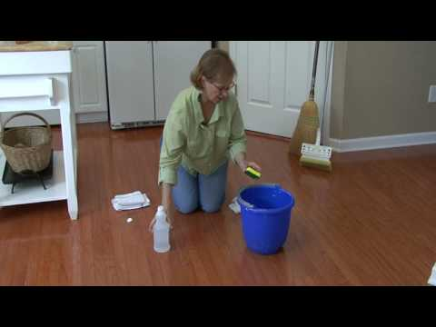 Cleaning Floors How To Remove Cat Urine From Hardwood