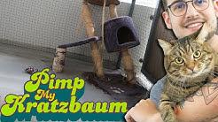 Sammys Kratzbaumtuning!