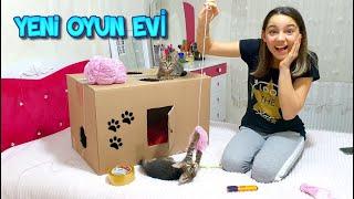 Yavru Kedilerim İçin Kartondan Oyun Evi Yaptım (ODA BASKINI)