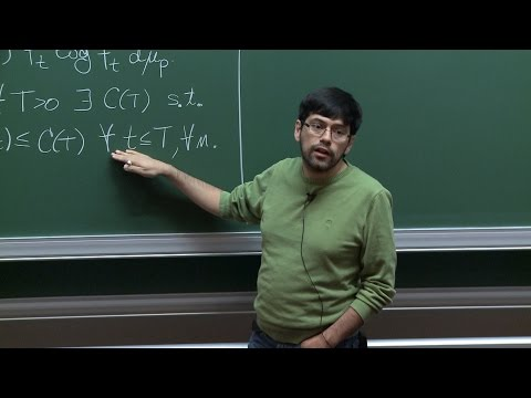 Milton Jara - Nonlinear fluctuations of interacting particle systems