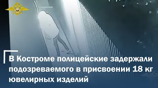 В Костроме полицейские задержали подозреваемого в присвоении 18 килограммов ювелирных изделий