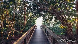 MUNDAJAM - VINEKI MUNDA [ PACIFIC MUSIC ] - 2018 -
