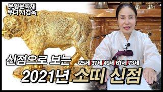 2021년 소띠 신점,사주,운세 내년 소띠의 금전운이 궁금하다면?