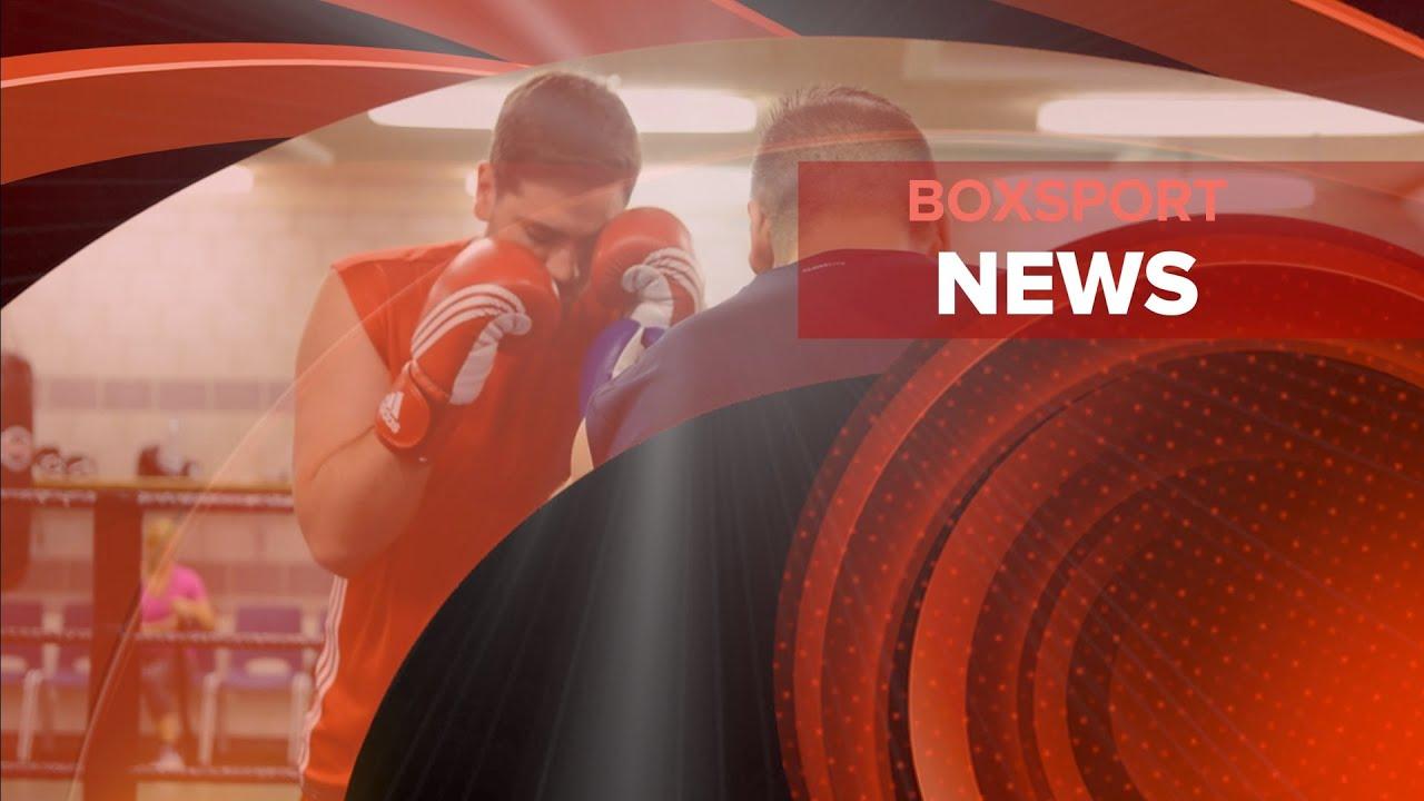 Boxsport News