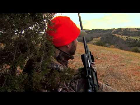 Bowhunting And Gun Hunting Whitetail Deer In South Dakota