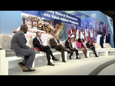 NYFA 2014 - Transforming Natural Resources Into Value Added Resources [In English]