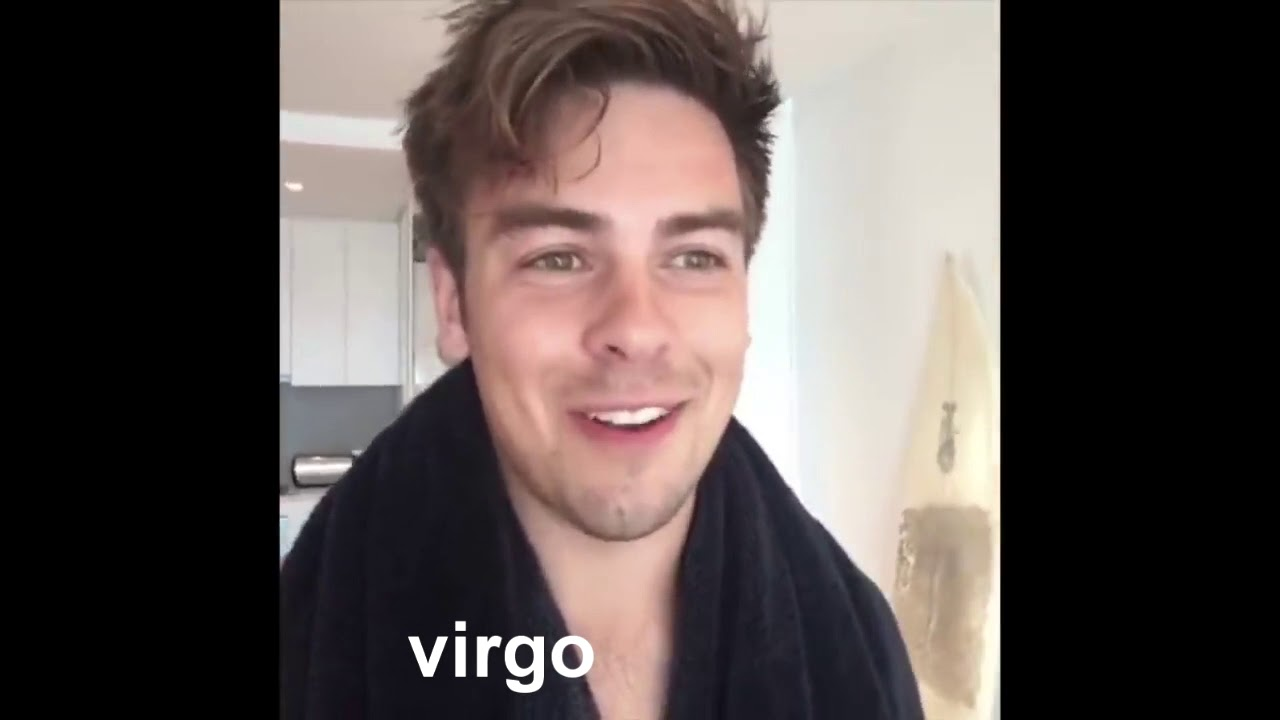 zodiac signs as vines // 1st edition