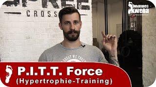 PITT Force Training | Wie funktioniert es & für wen ist es geeignet?