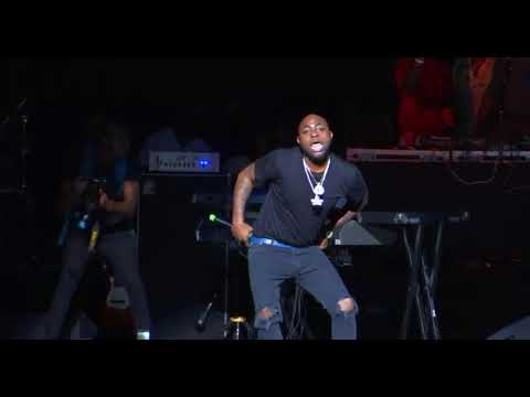 Davido Live at One  Africa Fest 2