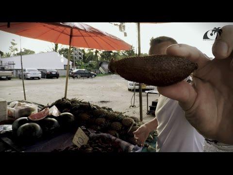 Что такое миндаль - польза и вред ореха для организма