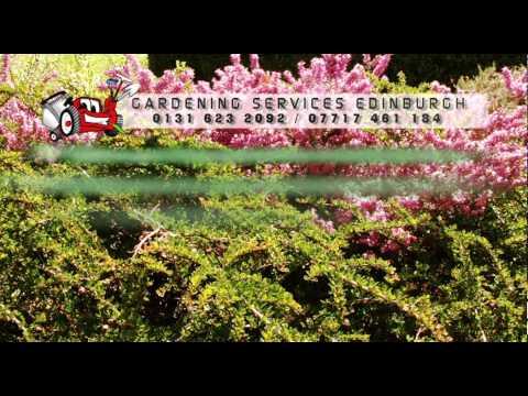 Edinburgh Gardeners - Gardening Services.mov