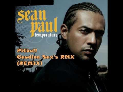 Temperature - Sean Paul  ft.Pitbull (REMIX)