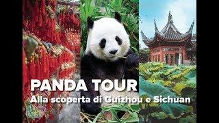 Viaggio In Cina: Panda Tour - Alla Scoperta Di Guizhou E Sichuan