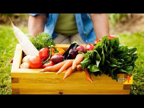 Clique e veja o vídeo Curso Comercialização Agrícola