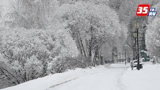 Морозная и солнечная погода установится в Вологодской области