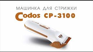 Codos CP-3100 машинка для стрижки шерсти собак, кошек(http://www.smileydog.ru В магазине