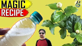 USE THIS MAGIC FORMULA For Organic Pest Control | Best Natural Pesticide Recipe