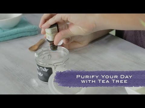 purify-your-day-with-tea-tree-essential-oil