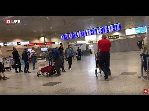 16 рейсов задержано, еще несколько не могут приземлиться в Домодедово. LIVE