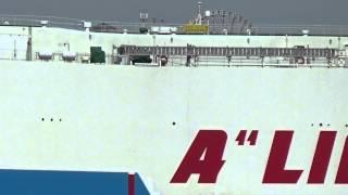 マルエーフェリーのRORO船「琉球エキスプレス2」の東京港(若洲埠頭)入...