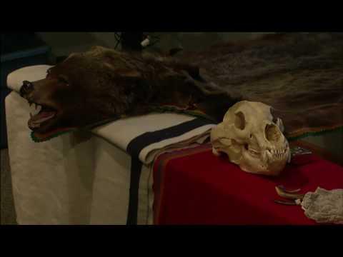 Lewis & Clark vs Ursus Horribilis