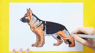 How to draw and color a German Shepherd - Learn to make dogs series