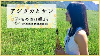 アシタカとサン / 久石譲 「もののけ姫」より Soprano Saxophone : sumi...
